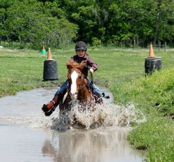 horseback riding horse in water